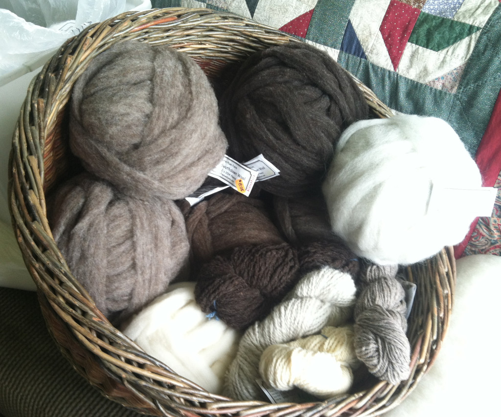 A sampling of the fiber that will be for sale next weekend (or any day on-line). It does not include items yet from this year's shearing, like super black lamb and a wool/alpaca blend.
